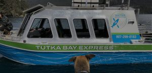Water Taxi Now Available
